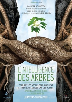 L'Intelligence des Arbres (2016)